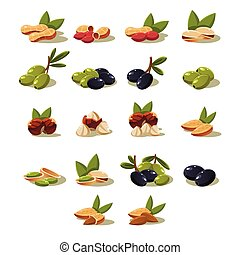 Olives and Nuts, Vector Illustration Modern Design Set