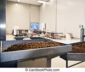 olives in a processing machine