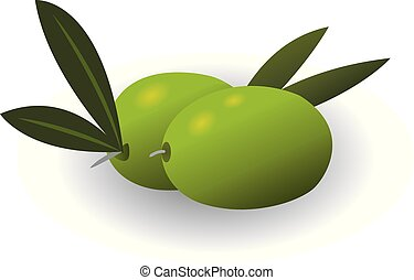 Olives isolated vector illustration on a white background