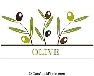 Olives label - Olive branch label. Vector illustration