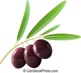 olives, noir