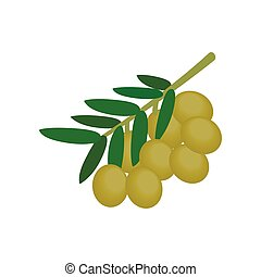 Olives on branch with leaves icon, isometric 3d