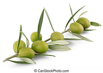 olives on the white background