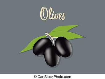 olives, vecteur, noir, illustration