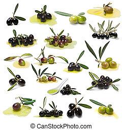 olives vertes, noir, collection.