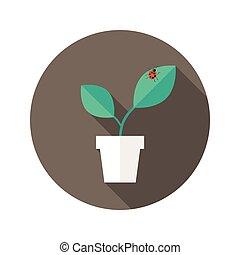 olla, con, hojas, y, error de dama, plano, icono
