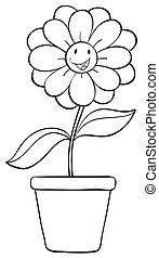 olla, flor, Bosquejo