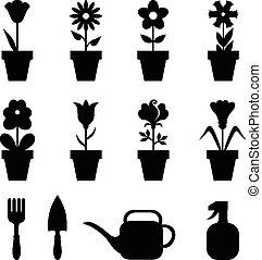 olla, flores, conjunto, iconos