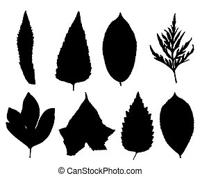 ??ollection of silhouettes of leaves