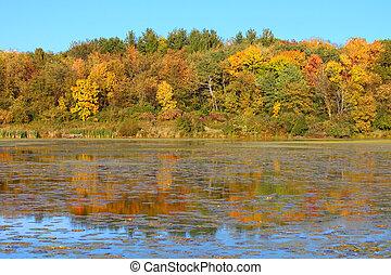 olson, lago, settentrionale,  Illinois
