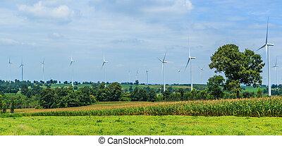 oltalom, közül, természet, -, sebesülés turbine