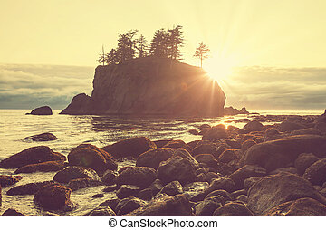 Olympic coast - Olympic National Park landscapes