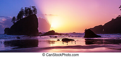 Olympic coast - Scenic and rigorous Pacific coast in the ...