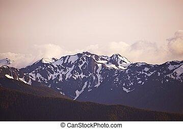 Olympic Mountains, Olympic National Park, Washington State, ...