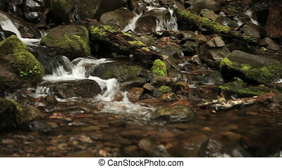 Olympic National Park river - The Sol Duc river flowing over...