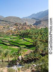 omán, sultanato, aldea, sayt, bilad