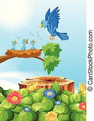 om, baum, nest, vögel