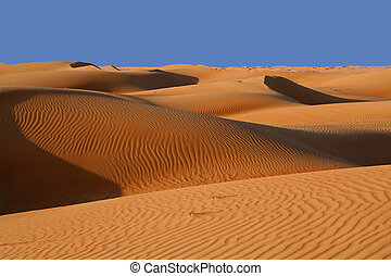 Sand dunes in the Wahiba Sands desert in Oman in the morning sun