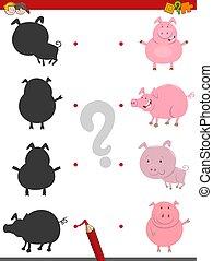 ombre, activité, animaux, cochon