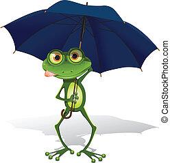 ombrello, rana