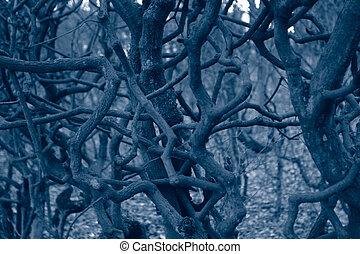 Dark monochrome forest, sinister tangled trees detail