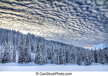 Beautiful fresh powder landscape with pine trees in Les Portes du Soleil in the European Alps. HDR