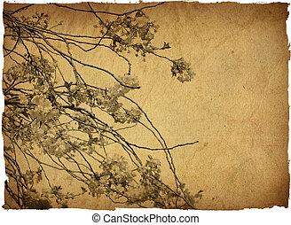 omodern, artistisk, blomma