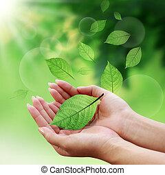 omsorg, bladen, med, din, hand, in, värld