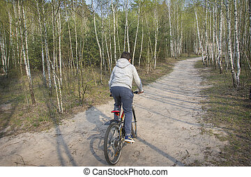 On a sunny spring day in the forest, a boy rides a bicycle.