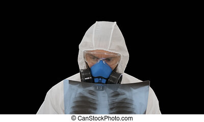 Medic in white hazmat protective suit checking lungs X-ray looking for epidemic virus, Alpha Channel