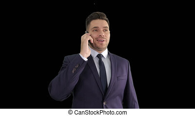 Smiling young businessman having a phone call with his...