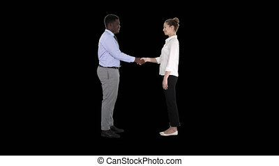 Professional business people handshaking, Alpha Channel - On...