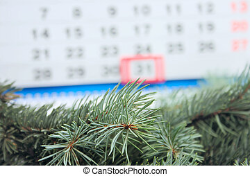 On eve of new year - Blue spruce branches removed close up...