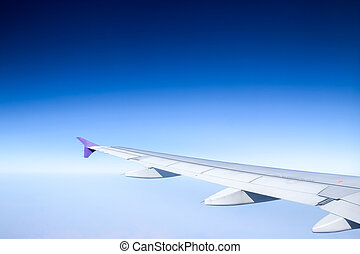 On flight, in the blue sky background