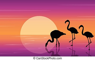 On lake scenery with flamingo silhouettes