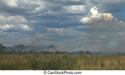 On the agricultural field dry grass burns.