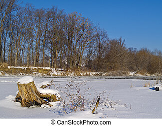 On the bank of winter river