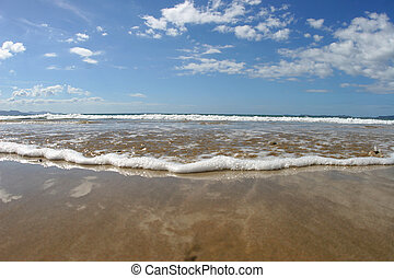 on the beach - A low photo taken on a beautiful beach in New...