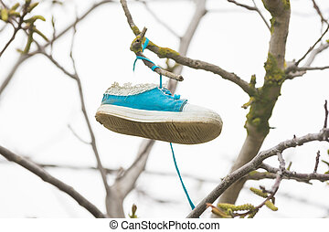On the branch of a tree hung a shoe