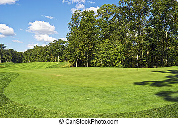 On the Green - The Charleston Springs Golf course in New...