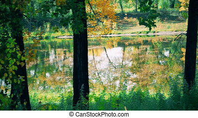 on the lake in the Park in autumn