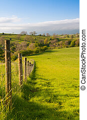 On the pasture, Smardale Gill, Great Britain - Smardale Gill...