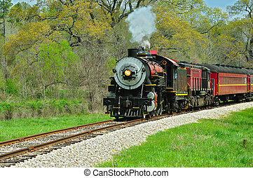 On the Railroad - Beatiful train engine and cars on the...