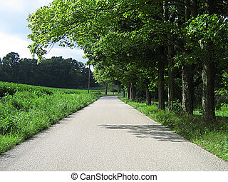 On The Road Again - A photograph of a quiet country road.