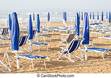 on the sandy beach cleaning, after winter, preparation for the holiday season in Italy. Wooden trunks in on the seashore after a sea storm. dense sea breeze at dawn