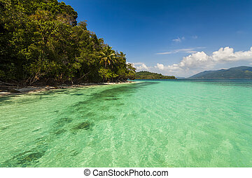On the shore of of a tropical island. Koh Chang. Thailand.