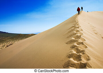 On the top of dunes