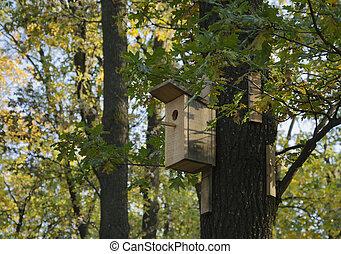 on the tree bird feeder