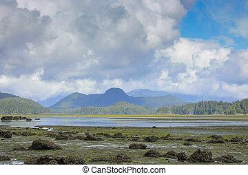 On vancouver Island, BC Pacific Coast Canada