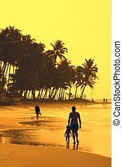 On yellow beach
